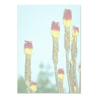 Desert bloom, outside Phoenix, Arizona, U.S.A. Custom Invitation