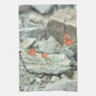 Desert Blossoms Southwest Cotton Kitchen Towels