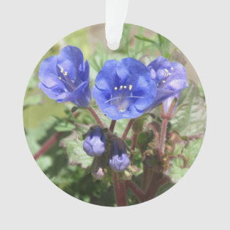 Desert Bluebells Ornament