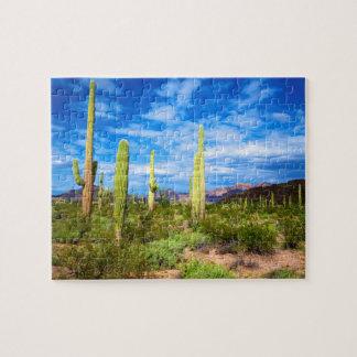 Desert cactus landscape, Arizona Jigsaw Puzzle