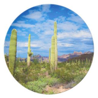 Desert cactus landscape, Arizona Plate