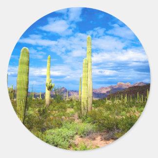 Desert cactus landscape, Arizona Round Sticker