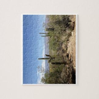 Desert Cactus - Puzzle