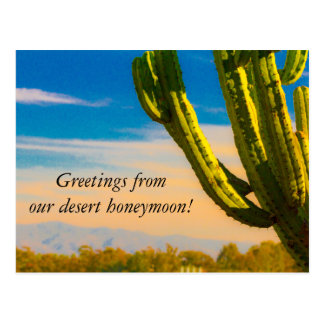Desert Cactus Saguaro Honeymoon Thank you Postcard