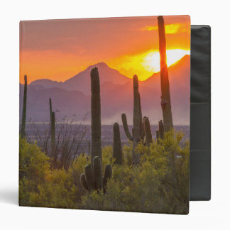 Desert cactus sunset, Arizona 3 Ring Binders
