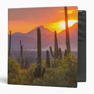 Desert cactus sunset, Arizona 3 Ring Binders
