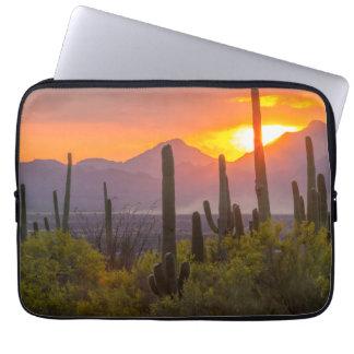Desert cactus sunset, Arizona Laptop Sleeve