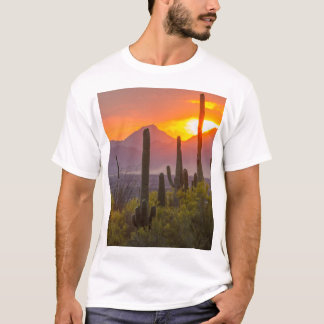 Desert cactus sunset, Arizona T-Shirt