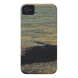 desert color blends Case-Mate iPhone 4 case