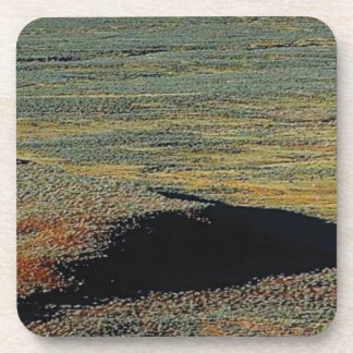 desert color blends coaster