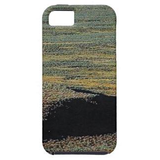 desert color blends iPhone 5 case