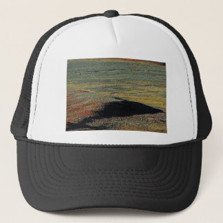 desert color blends trucker hat
