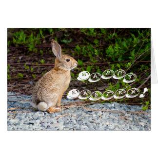 Desert Cottontail Rabbit Card