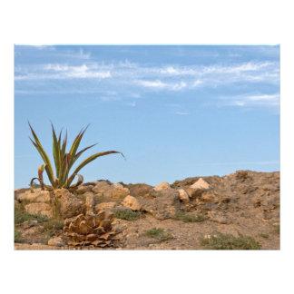 desert customized letterhead