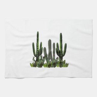 Desert Domain Kitchen Towel