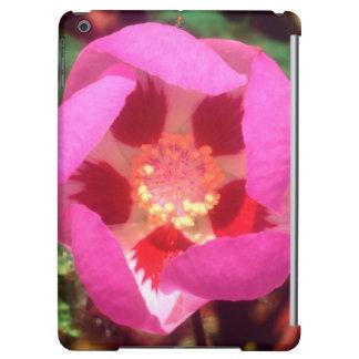 Desert Five Spot Wildflower iPad Air Covers