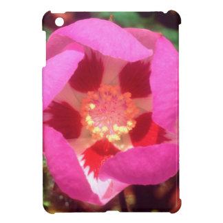 Desert Five Spot Wildflower iPad Mini Covers