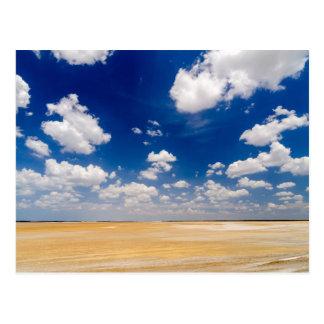 Desert Flatlands Postcard