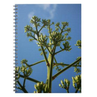Desert Flower Notebook