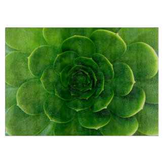 Desert Green Succulent Cactus Cutting Board
