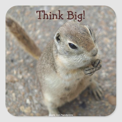 Desert Ground Squirrel Animal Motivational Stickers