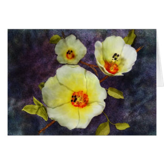 Desert Hibiscus Card