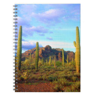 Desert in springtime notebook