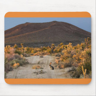 Desert Jackrabbit Mouse Pad