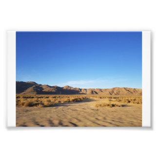 Desert Motion Photo Print
