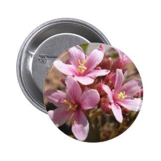 Desert Pink - Button 2