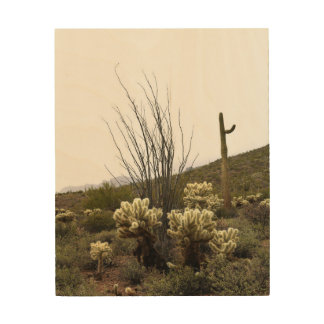 Desert Plants Wood Canvases