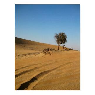Desert Safari Abu Dhabi Postcard