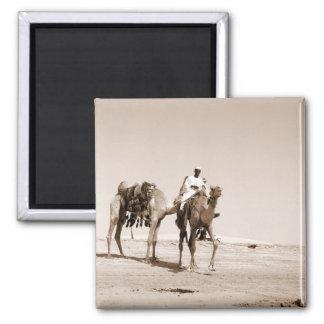 Desert Scene Square Magnet