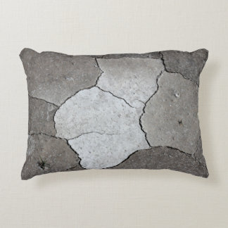 Desert soil Pillow