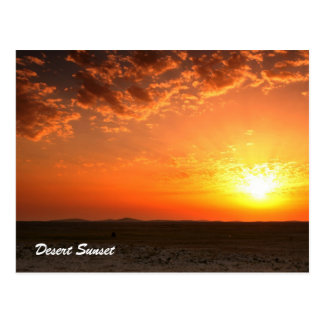 Desert Sunset Postcard