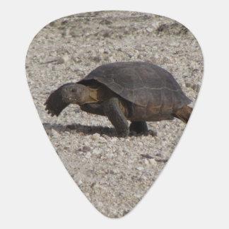 Desert Tortoise Guitar Pick