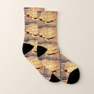 Desert Tortoise Unisex Socks 1