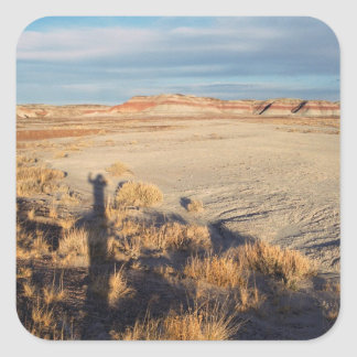 Desert Wave: Petrified Forest National Park Square Sticker