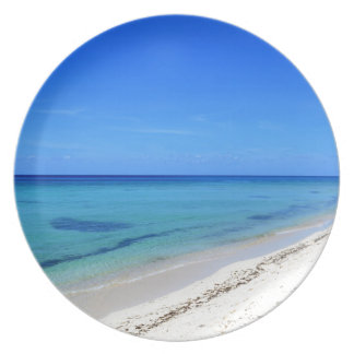 Deserted Cosumel Beach Calm Teal Water White Sand Party Plate