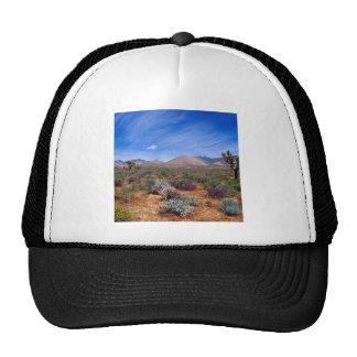 Deserts Bloom Conservation Area Trucker Hats