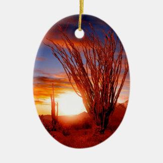 Deserts Ocotillo Sonora Arizona Ceramic Oval Ornament