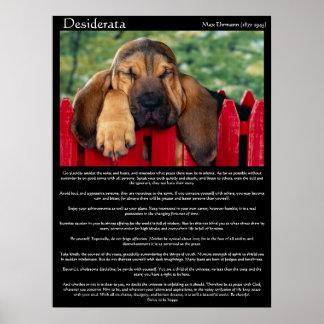 Desiderata Bloodhound Posters