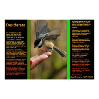 DESIDERATA Flying Sparrow Posters