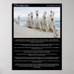 Desiderata horses running Posters