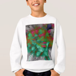 Designed Explosion #5 Sweatshirt