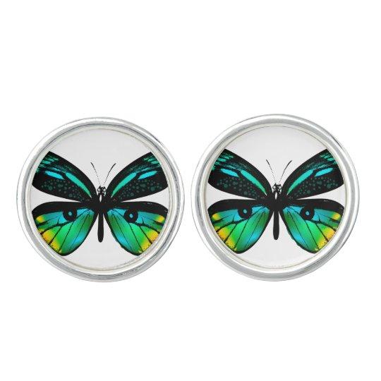 Designers silver girly cufflinks : Green butterfly