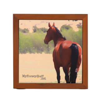 Desk Organizer with horse photograph