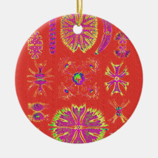 Desmidiea on Burnt Orange Ceramic Ornament