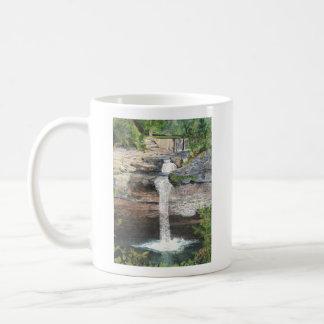 Desoto Falls Mug
