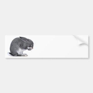 Despairing Rabbit Bumper Sticker